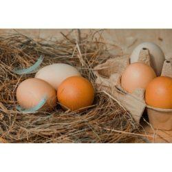 Eier/Eiernudeln